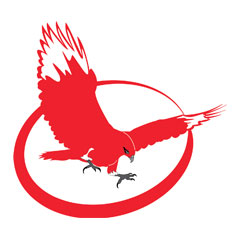 Red Hawk Writing Logo